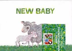 Eric Carle Birth Announcements Boy Girl