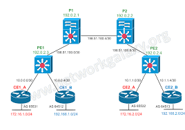 network galaxy  creating mpls layer  vpncreating mpls layer  vpn
