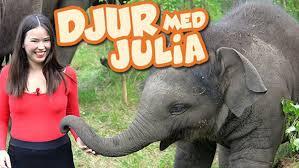 Djur med Julia | <b>Barnkanalen</b>