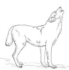 Huilende Wolf Kleurplaat Gratis Kleurplaten Printen