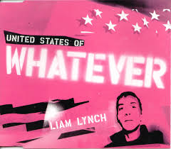 Liam Lynch United states of whatever ...