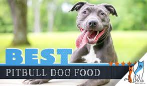 Merrick Dog Food Feeding Chart 15 Best Dog Foods For American Pitbull Terriers Our 2019