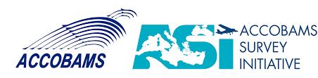 Resultado de imagen de asi survey cetacean