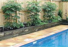 pool landscape lighting ideas. garden design with backyard pool landscaping ideas fragrant climbing plants from diybackyardideascom landscape lighting a