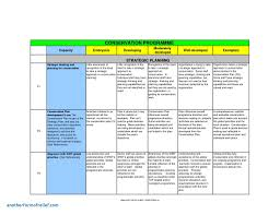 011 Strategic Plan Outline Template Ideas Project Management