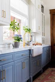 Best of Blog: Indoor PlantsBECKI OWENS   kitchen.   Blue ...