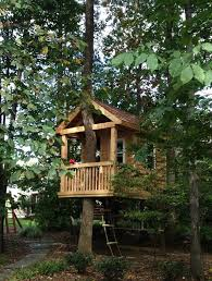 treehouses for kids. Tree House - Traditional Kids Other Metro Bianco Design \u0026 Build Corp. Treehouse Treehouses For E