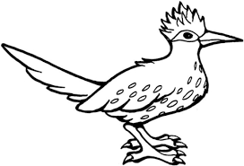 Small Picture Roadrunner Bird coloring page Free Printable Coloring Pages