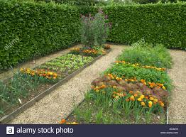Kitchen Gardens Kitchen Garden Bed Stock Photos Kitchen Garden Bed Stock Images