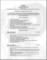 Cv Format For Airlines Job Resume Examples Templates Free Sample Aviation Resume Examples Cv