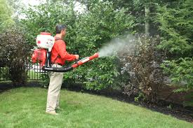 Image result for Mosquito Control That Helps