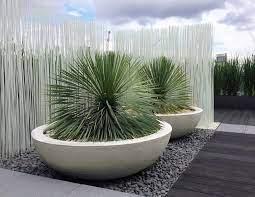 lily bowl urbis design contemporary