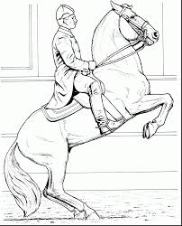 Small Picture magnificent printable realistic horse coloring pages with free