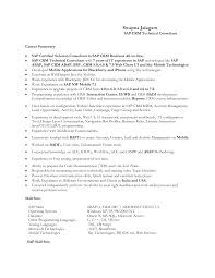 Sap Crm Functional Resume Resume For Study