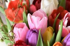 Доставка цветов онлайн