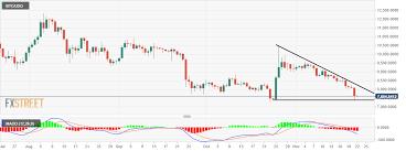 Bitcoin Technical Analysis Bch Usd Bulls Ignore The Slump