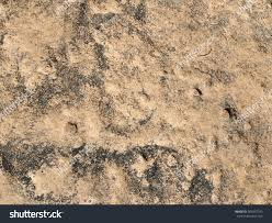 natural stone floor texture. Closeup Natural Stone Floor Texture Background Stock Photo 563937745 - Shutterstock O