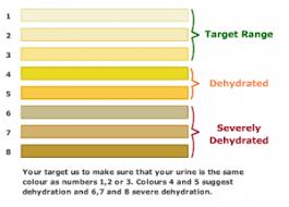 Body Hydration Level Chart Reasonable Body Hydration Level Chart 2019