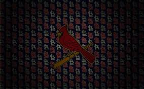 stl cardinal wallpaper