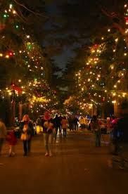 Pasadena Christmas Lights Christmas Tree Lane Pasadena P A S A D E N A C