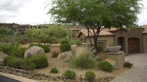 Garden And Patio Desert Plants For Front Yard Landscaping House Design With  Stone Border Trees Backyard