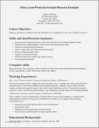 Resume Example Educational Background Elegant Entry Level It Resume