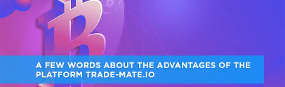 A Few Words About The Advantages Of The Platform Trade Mate Io