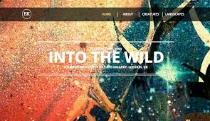 Artist Website Templates