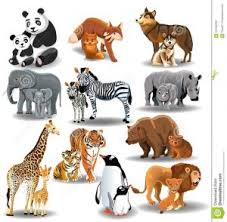 Science Animals And Their Young Ones Studentblog
