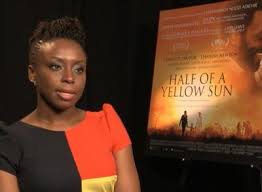 Image result for half of a yellow sun