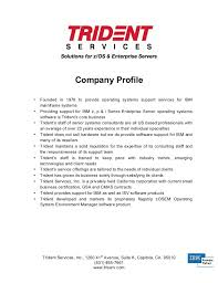 Company Bio Template Fascinating Company Profile Sample Download Vaydileeuforicco