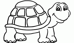 Small Picture Baby Turtle Coloring Pages Baby Sea Turtles Coloring Page