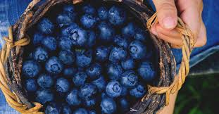 Berries Glycemic Index Chart Diabetes And Blueberries Weight Loss Insulin Sensitivity