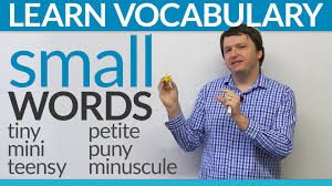 Small Picture Improve your vocabulary Synonyms for small in English YouTube