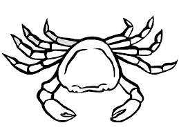 Small Picture Pleasant Crab Coloring Pages 224 Coloring Page