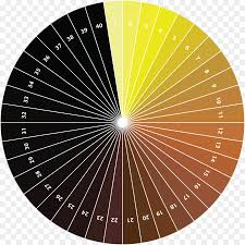Color Wheel Pastel Tints And Shades Standard Reference Method