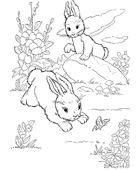 free coloring pages of winter animals cooloring com
