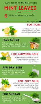 6 Homemade Mint Face Pack And My Experience With Mint On Skin ...