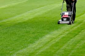 Mowing Patterns Impressive Curb Appeal Creating Patterns In Your Lawn Like Professional