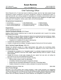 Resume Impact Statement Examples Resume Truck Driver Resume Examples 12