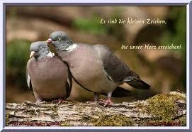 Moderne Und Romantische Liebesgedichte