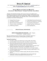 Digital Marketing Resume Sample Delectable Digital Marketing Manager Free Resume Samples Blue Sky Resumes