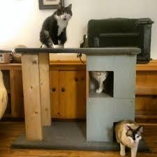 diy cat tree imgur gtkncnb scratch climbing wall unique condos house cats big scratching post houses