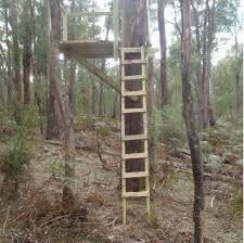 tree stand p5043530 jpg