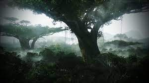 nature, jungle, Avatar, forests ...