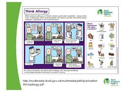 Eu Food Regulations Food Allergen Labelling