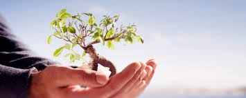 environmental science assignment writing help environmental science writing from experienced writers