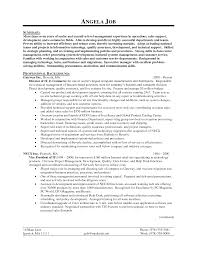 cover letter it director resume template director of it resume cover letter technical program manager sample resume brand sampleit director resume template extra medium size