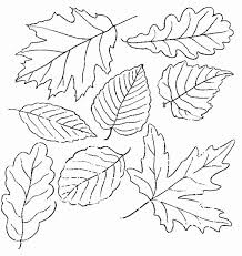 Small Picture 218 best Coloriage AUTOMNE images on Pinterest Fall coloring