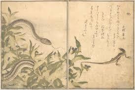 kitagawa utamaro ukiyo. kitagawa utamaro: skink and snake (tokage hebi), from picture book of utamaro ukiyo s